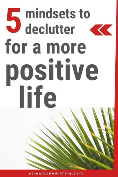 "Green leafy plant on white background, with a text overlay that reads: ""5 mindsets to declutter for a more positive life"""